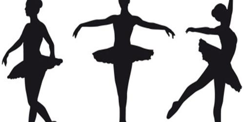 Das Primaballerina-Gen
